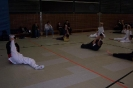 Spezialtraining mit dem Taekwondo Bundes- und Olympiatrainer Georg Streif_4
