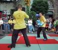 Vorführung auf dem Repelener Dorffest im August 2001_2