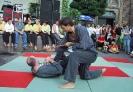 Vorführung auf dem Repelener Dorffest im August 2001_4